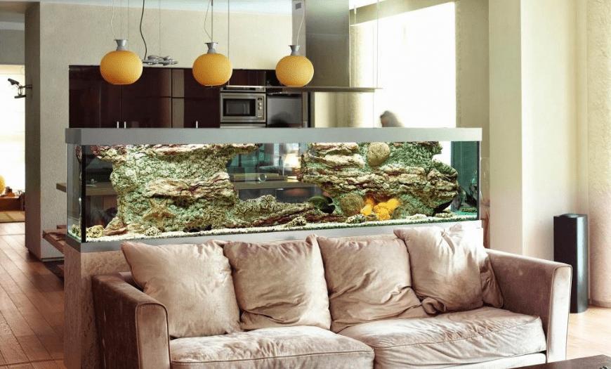 Зонирование аквариумом